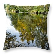 Fall Series 35 Throw Pillow