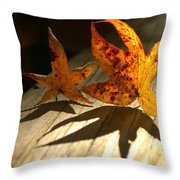 Fall Shadow Landscape Throw Pillow