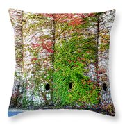 Fall Silos Throw Pillow