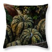 Fall Squash Harvest Throw Pillow