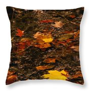 Fall Stream Bed Throw Pillow