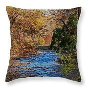 Fall Stream Throw Pillow