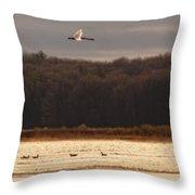 Fall Swans Throw Pillow
