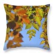 Fall Time Throw Pillow