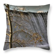 Fall Time Waterfall Throw Pillow