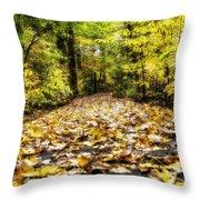 Fall Trail Throw Pillow