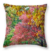 Fall Tree Leaves Throw Pillow