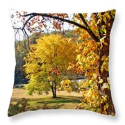 Fall Trees 4 Of Wnc Throw Pillow