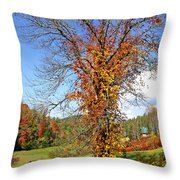 Fall Trees 5 Of Wnc Throw Pillow