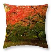 Fall Trees Throw Pillow