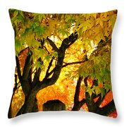 Fall Trees On A Country Road 3 Throw Pillow