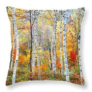 Fall Trees, Shinhodaka, Gifu, Japan Throw Pillow