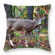 Fall Trophy Buck Throw Pillow
