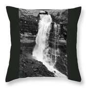 Waterfall Under The Bridge Throw Pillow