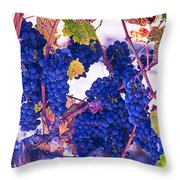 Fall Wine Grapes Throw Pillow