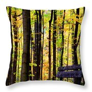 Fall Woods In Michigan Throw Pillow
