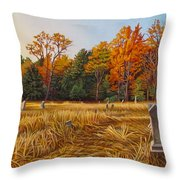 Fallbrook Throw Pillow