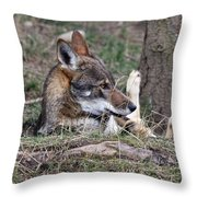 Fallen And I Can't Get Up Throw Pillow