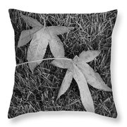 Fallen Autumn Leaves In The Grass During Morning Frost Throw Pillow