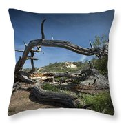 Fallen Dead Torrey Pine Trunk At Torrey Pines State Natural Reserve Throw Pillow