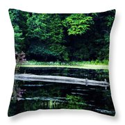 Fallen Log In A Lake Throw Pillow by Bill Cannon