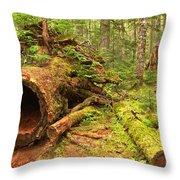 Fallen Rainforest Giant Throw Pillow
