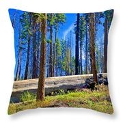 Fallen Sequoia In Mariposa Grove In Yosemite National Park-california Throw Pillow