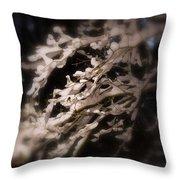 Fallen Snow Throw Pillow