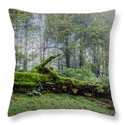 Fallen Stump Throw Pillow