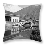 Fallen Tree In Water Pool Inside The Shalimar Garden Throw Pillow