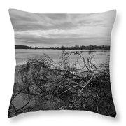 Fallen Trees At The Lake Throw Pillow