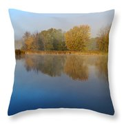 Falling For Reflections... Throw Pillow