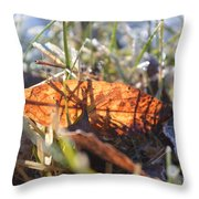 Falling For The Light Throw Pillow