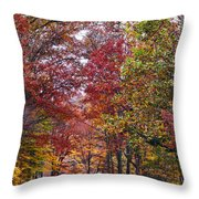 Falling For West Virginia Throw Pillow