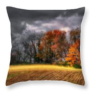 Falling Into Winter Throw Pillow by Lois Bryan