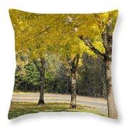 Falling Leaves From Neighborhood Beech Trees Throw Pillow