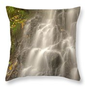 Falling On The Leaf Throw Pillow