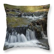 Falls Along Big Stone Lake Throw Pillow
