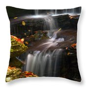 Falls And Fall Leaves Throw Pillow