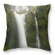 Falls Creek Falls Gifford Pinchot Nf Throw Pillow