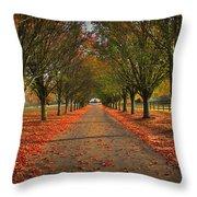 Fall's Driveway Throw Pillow