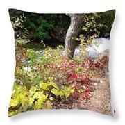 Falls Fall View Throw Pillow
