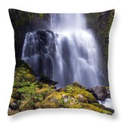 Falls In The Falls Throw Pillow