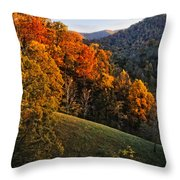 Fall's Mountainside Cascade Throw Pillow