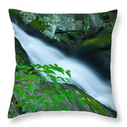 Falls Of Plymouth Throw Pillow