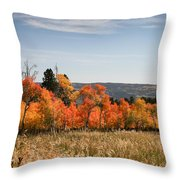 Fall's Splendor - Casper Mountain - Casper Wyoming Throw Pillow