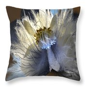 Falls That Flew  Throw Pillow