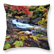 Falltime In Algonquin Throw Pillow