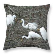 Family Affair Egrets Louisiana Throw Pillow
