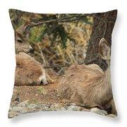 Family Nap Throw Pillow